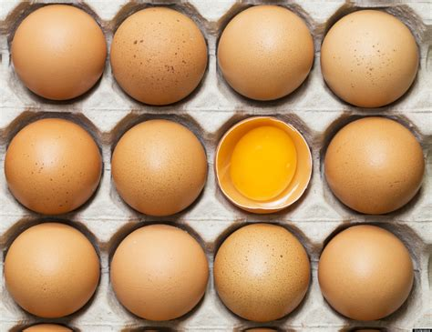 can we apply egg yolk on dry skin body picture 5