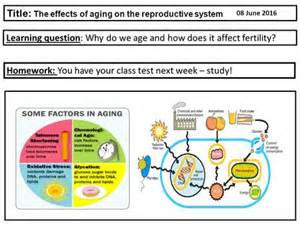 question on aging of the reproductive sysyem picture 3