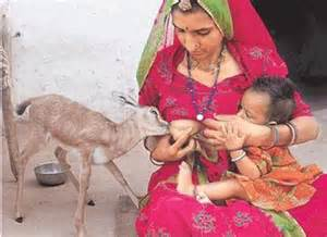 breast milk in indian stories picture 11
