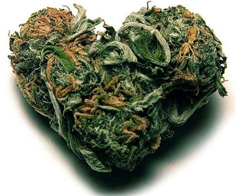 i smoke two joints lyrics picture 6