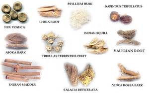 natural herbal medicines picture 7
