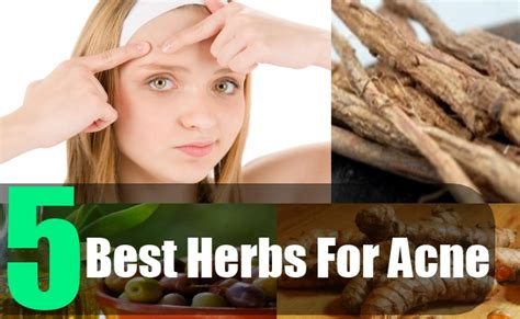are there herbs to thicken skin picture 10