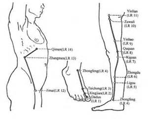 pressure points for liver function picture 7