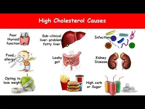 high cholesterol and lips picture 2