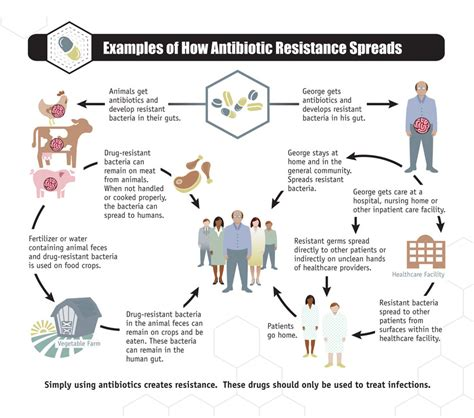 how long should you use one antibiotic acne picture 3