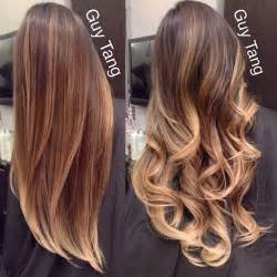 dark hair with blonde highlights picture 15
