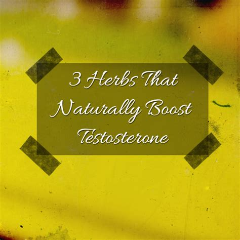 boost testosterone naturally herbs picture 1
