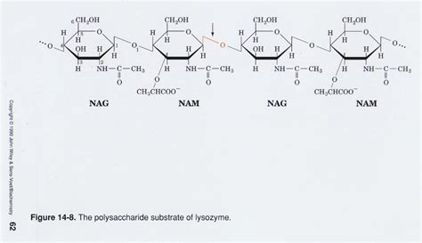 formula o-1861 picture 9