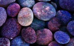 gal bladder stones picture 11