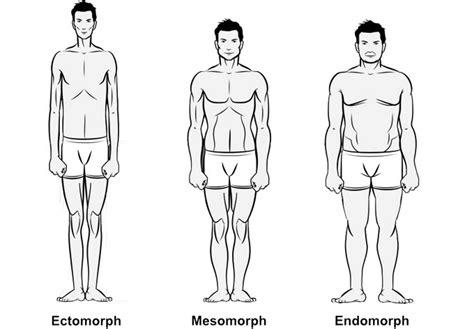 somatotype penis type picture 3