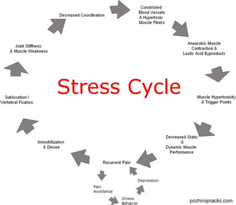 why your blood pressure rises under stress picture 11
