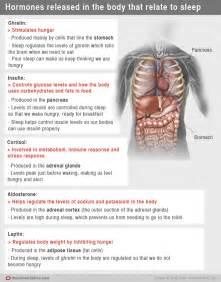 sleep hormones picture 5