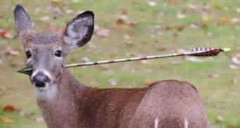 deer tongue stuck in women picture 1