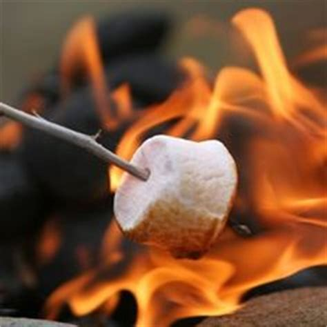 can you roast marshmellows on gel fire pit? picture 3