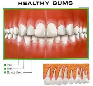 healthy teeth picture 10