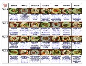 diabetic weight loss meal supplemts picture 3