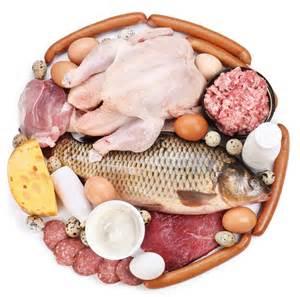 diet protein picture 1