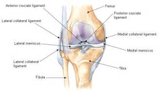 hip joint slipping in and out picture 10