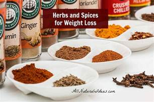 susun weed herbs to loose weight fast picture 3