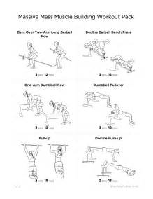 muscle building exercises picture 5