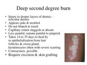 first degree burn of the skin picture 1