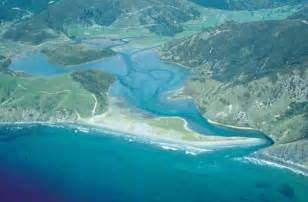 aging nz picture 7