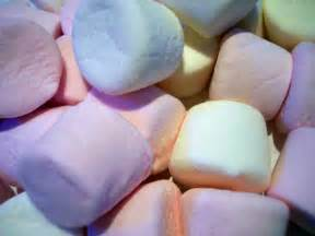 marshmallow picture 11