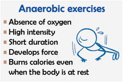 anaerobic picture 2