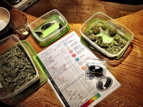 weed smoke shop picture 3