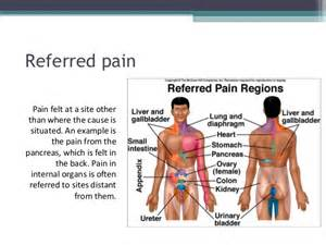 gastrointestinal back pain picture 7