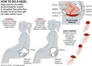 kegel muscle picture 3