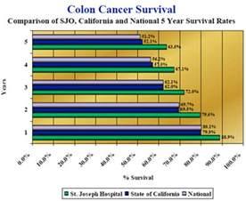 Colon chart picture 2