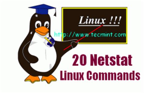 incoming search terms for the article keywordluv linux picture 16