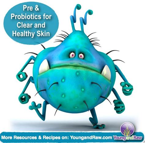 will you have more energy on probiotics picture 14