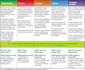 diet portions and exercise picture 14