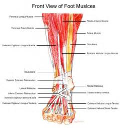 muscle pull in foot picture 1