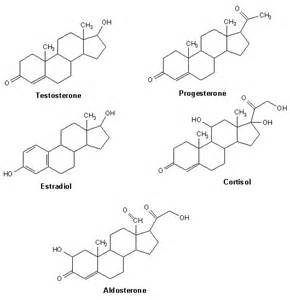 testosterone molecule picture 7