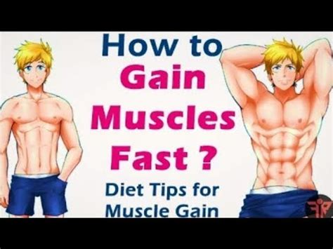 free tips on how to gain muscle and picture 4