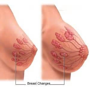 dailymotion breast changes in pregnancy picture 3