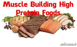 muscle builder with protein worms picture 14