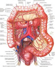 sympthoms of colon cancer picture 5