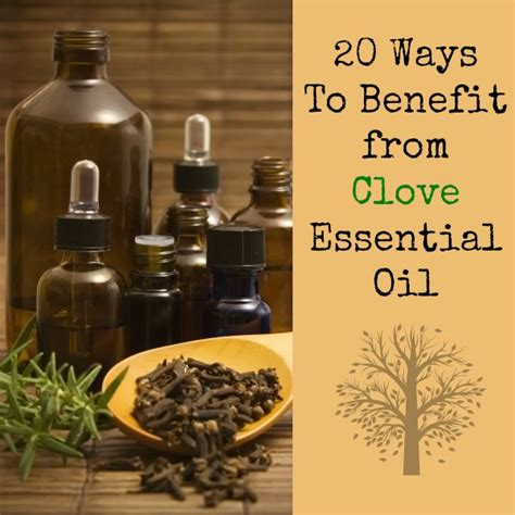 clove oil and hair benefits picture 15
