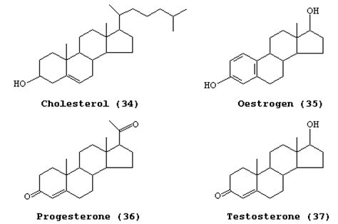 cholesterol testosterone and estrogen are examples of picture 4