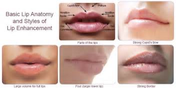 lip augmentation permanent safe fda picture 6