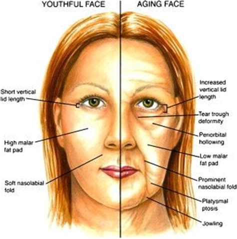 anti-aging at 28 picture 5