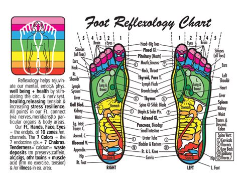 penis hand reflexology picture 7