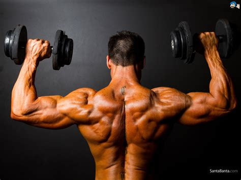 does creatine cause weight loss picture 13