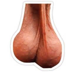 penis cut picture 1