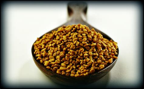 fenugreek testosterone picture 5