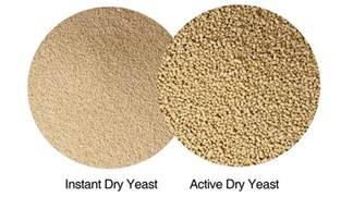 brewers yeast vs quick rise yeast convesion picture 1